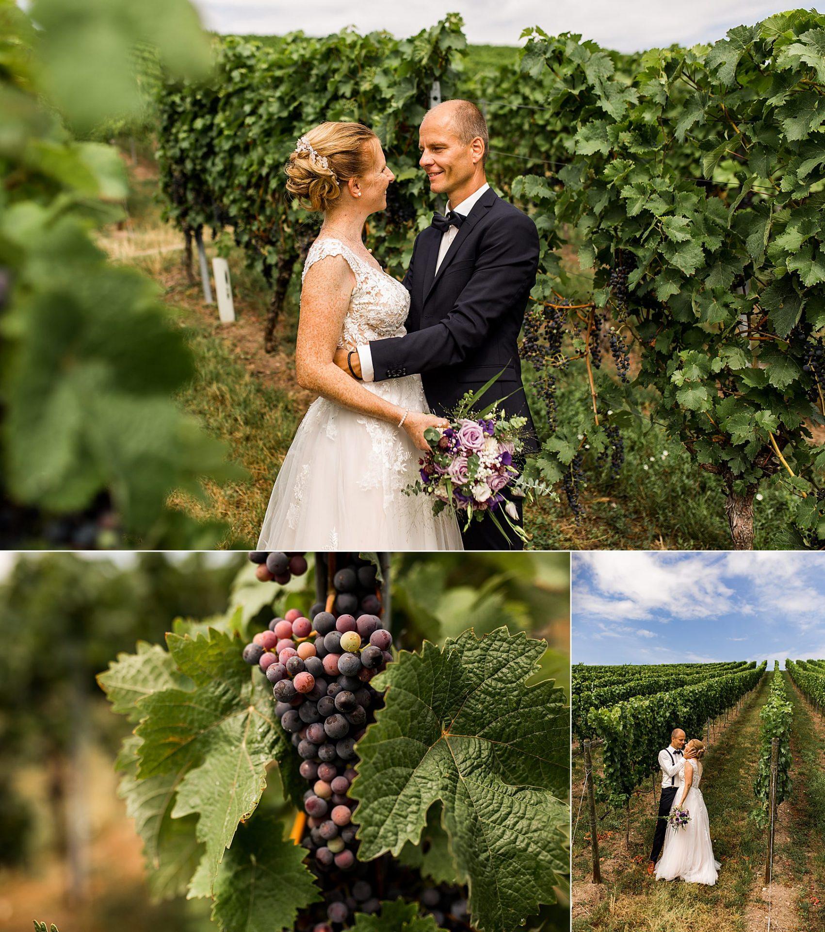 Hochzeitsfotograf Daniela Knipper in heilbronn in den Weinbergen