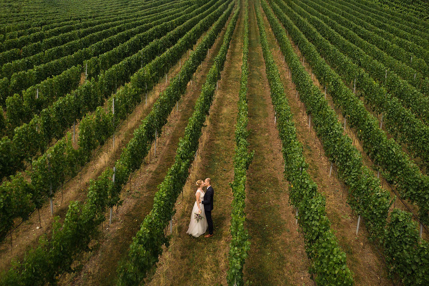 Drohnenfoto von Brautpaar in den Weinbergen in Heilbronn