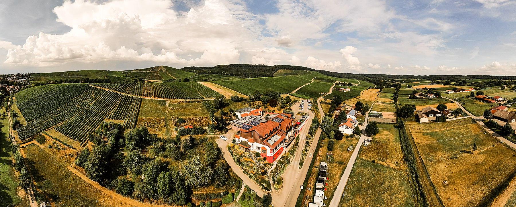 Drohnenfoto von einer Hochzeitslocation in Heilbronn in Flein