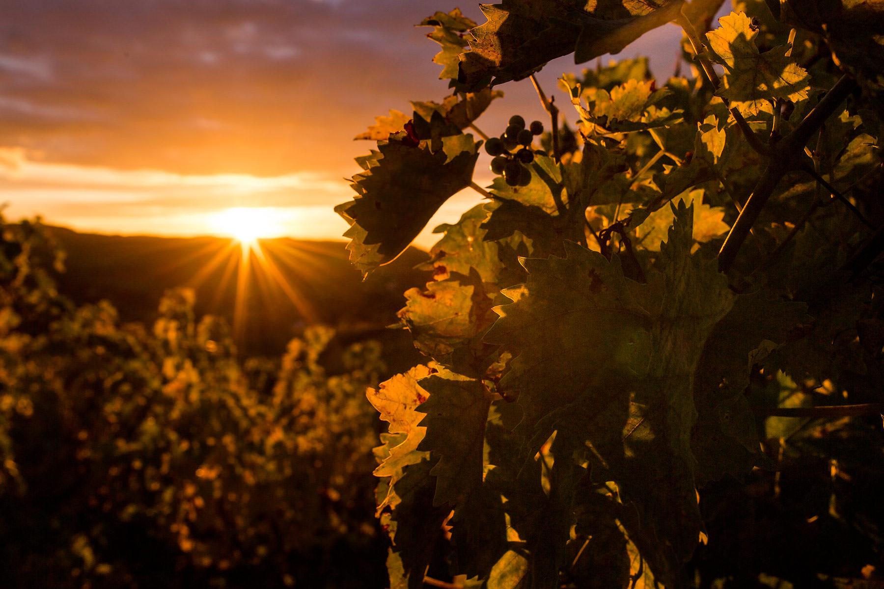Sonnenaufgang - so machst du schönere Bilder